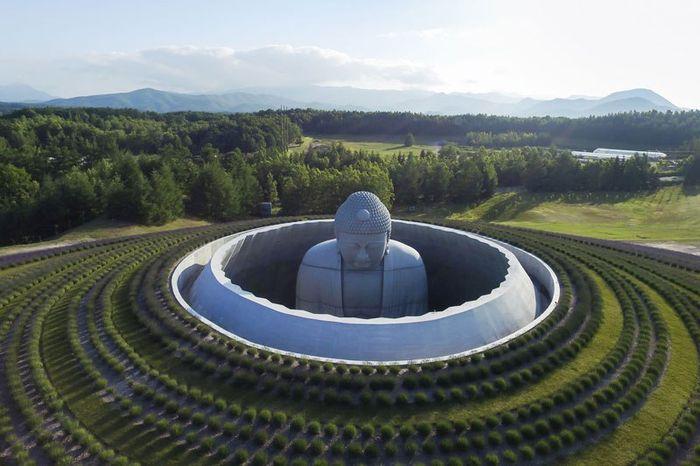 01 Buddha immerso nella collina di lavanda