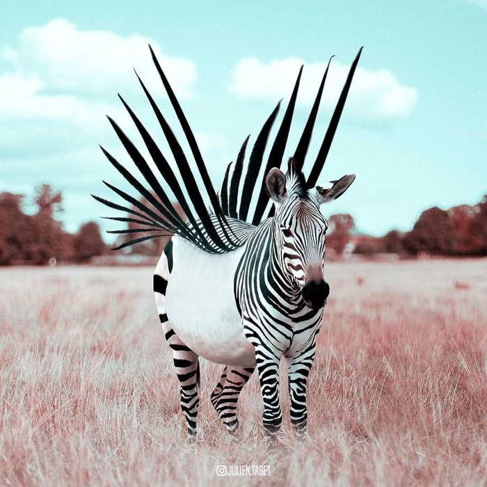 01 animali fantastici creati con photoshop