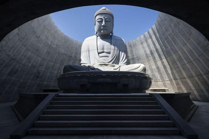 02 Buddha immerso nella collina di lavanda