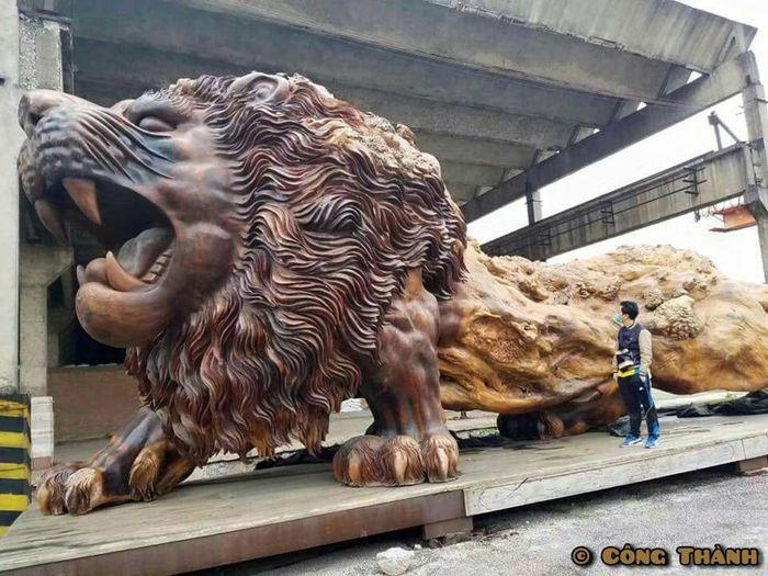 02 leone intagliato nel legno più lungo al mondo