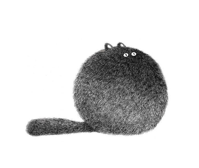 04 gatti disegnati con la china
