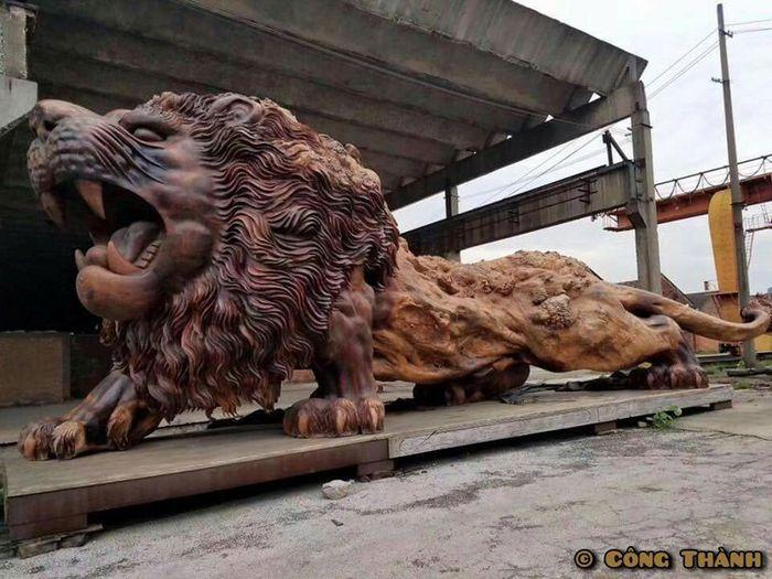 04 leone intagliato nel legno più lungo al mondo