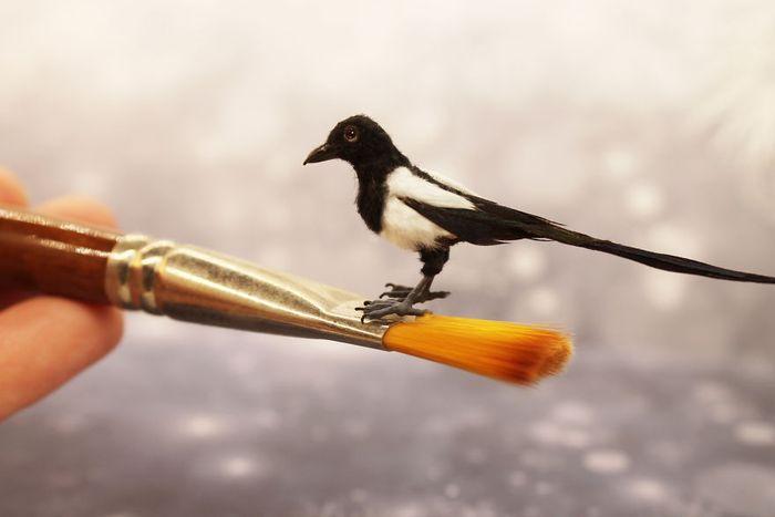 05 Katie Doka crea uccelli in miniatura con una fedeltà nei particolari impressionante