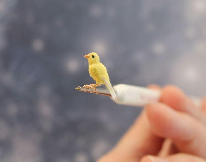 06 Katie Doka crea uccelli in miniatura con una fedeltà nei particolari impressionante