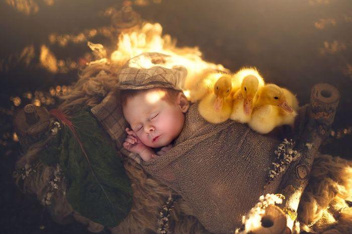 06 foto di neonati con animali