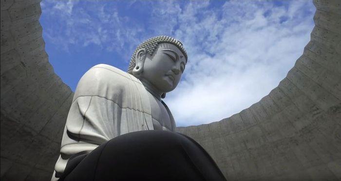 07 Buddha immerso nella collina di lavanda