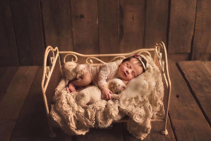 10 foto di neonati con animali