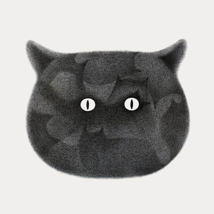 10 gatti disegnati con la china