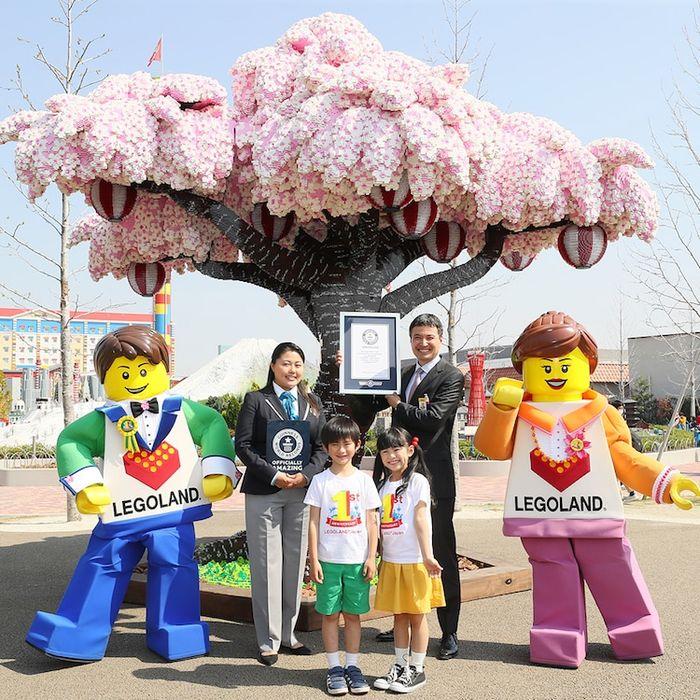 01 albero di ciliegio in fiore composto da oltre 800.000 matt