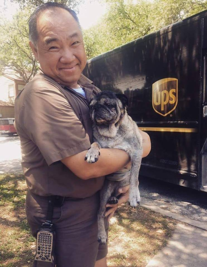 02 operazione UPS dog