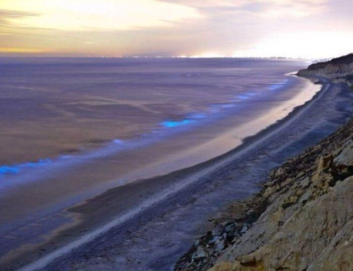 03 spiagge di San Diego fluorescenti