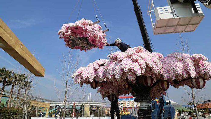 05 albero di ciliegio in fiore composto da oltre 800.000 matt