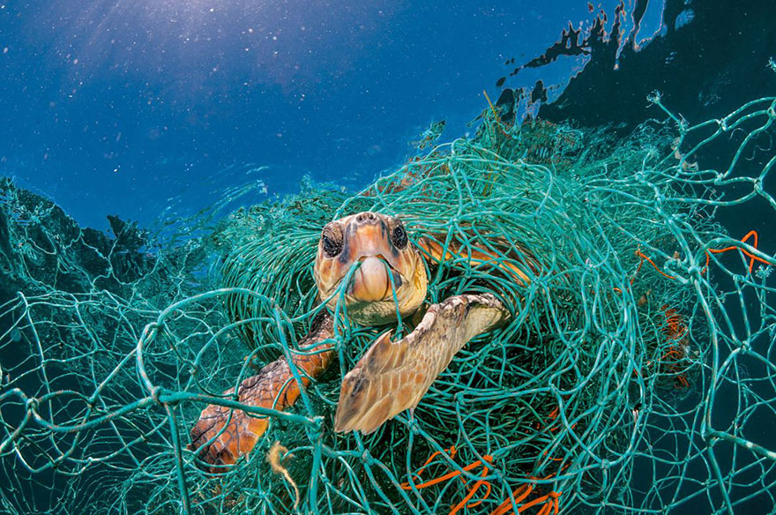 06 Inquinamento plastica National Geographic