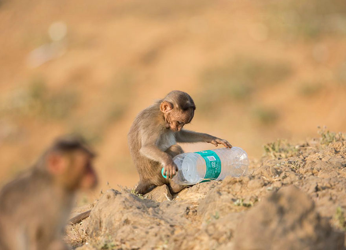 09 Inquinamento plastica National Geographic