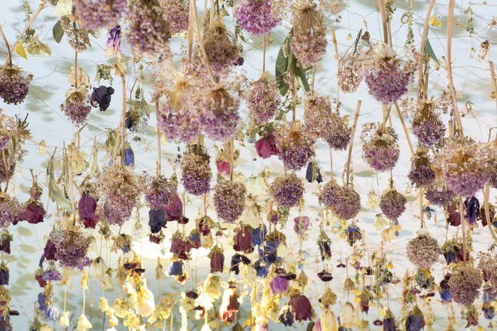 10 Gli allestimenti floreali di Rebecca Louise Law