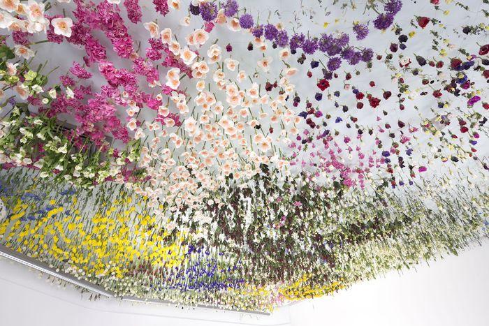 11 Gli allestimenti floreali di Rebecca Louise Law