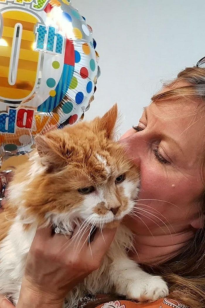 08 Si chiama Rubble ed è il gatto più anziano della Gran Bretagna