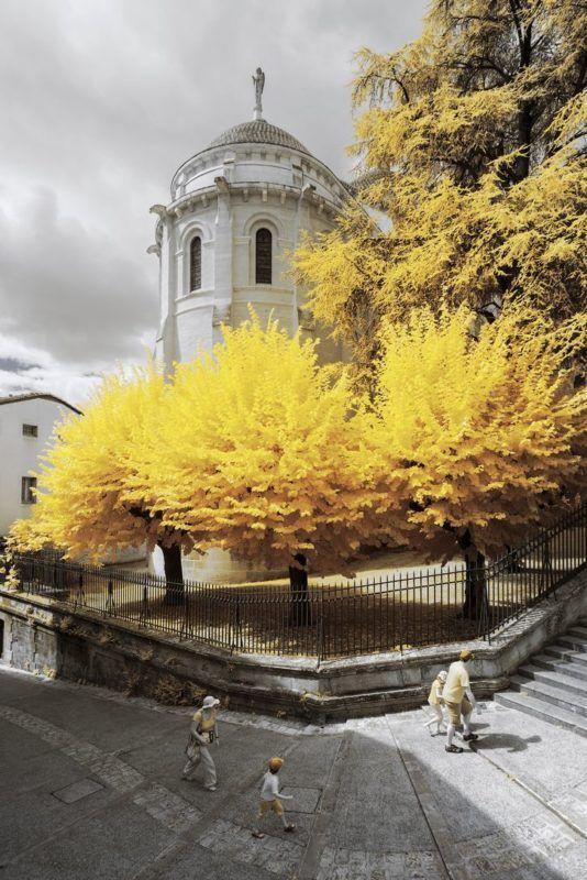 Paesaggi della Francia in giallo nelle foto di Pierre-Louis Ferrer