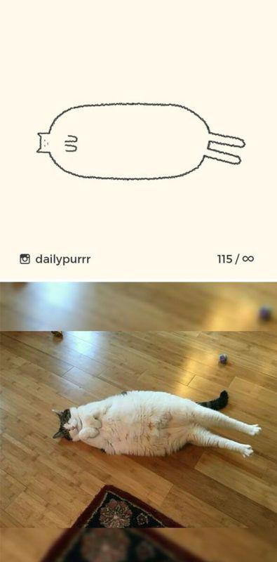 04 Immagini stilizzate delle pose più divertenti di gatti nei disegni di Ainars