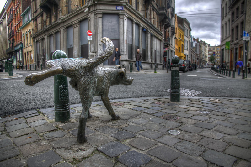02 Zinneke Pis il cane che urina per le strade di