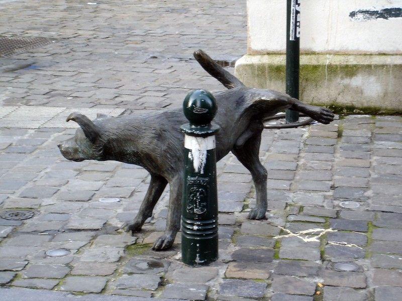 Zinneke Pis  il cane che urina per le strade di Bruxelles